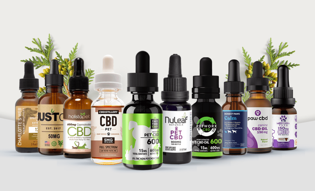 In What Condition Glow Cbd For Dog Should Be Used?