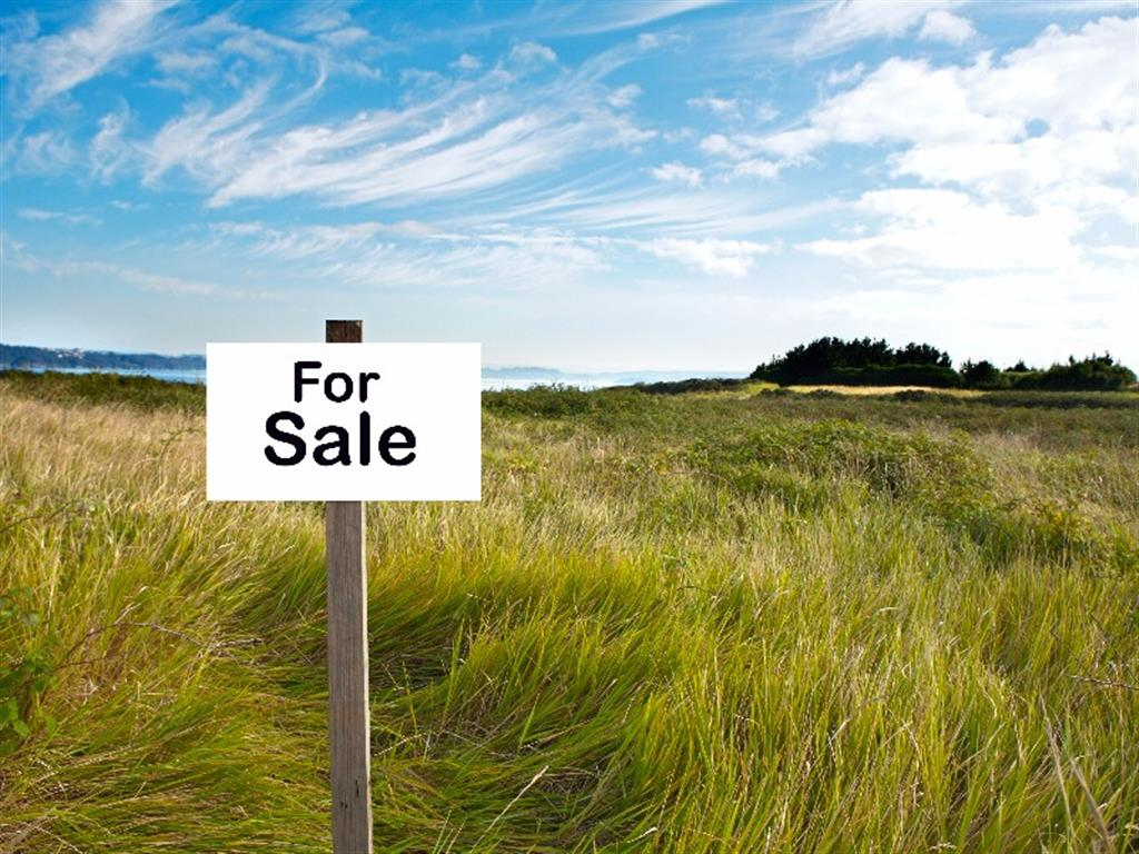 All Information About Hunting Land For Sale in Mississippi